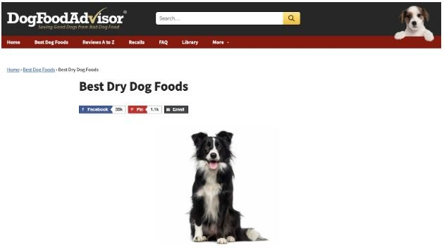 Dog Food Advisor Top Money Genarating Page