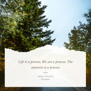 Life and Universe quote